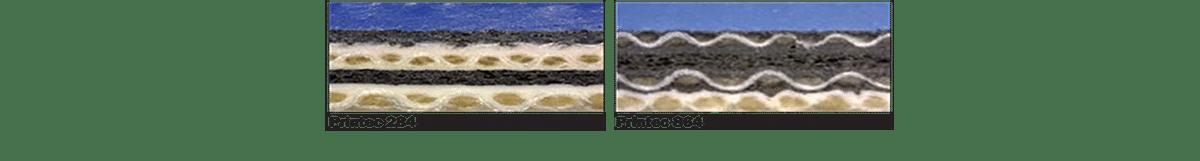 Comparazione tra Caucciù Printec 284 e Printec 864