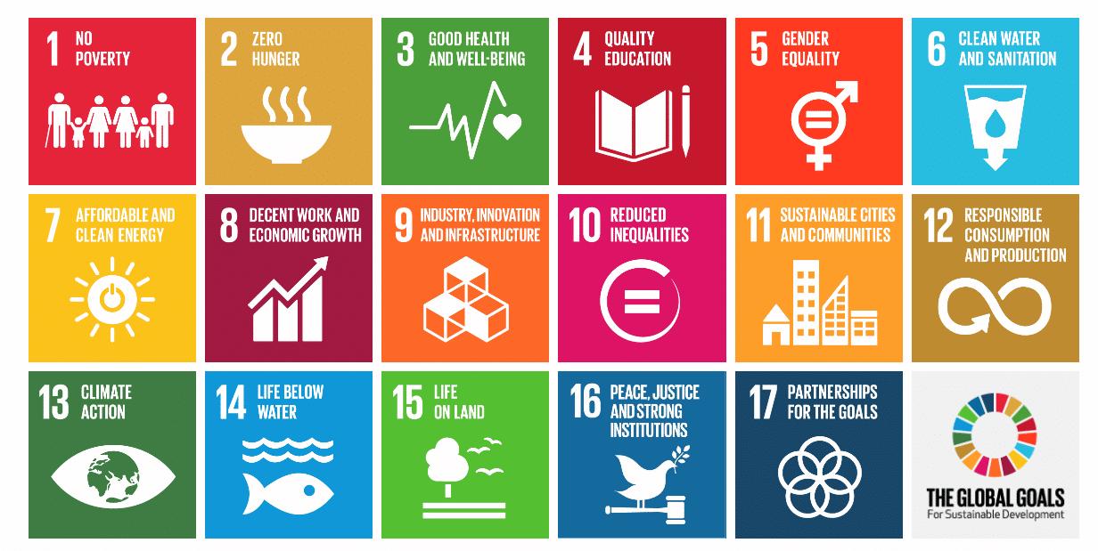 Investire nella sostenibilità ambientale. Gli obiettivi di sviluppo sostenibile