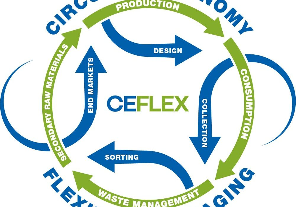 Infografica CEFLEX