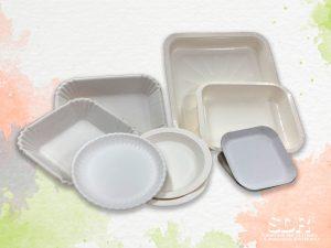 Vaschette e piatti termoformati in carta